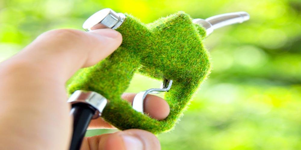Resultado de imagem para China deve expandir produção e consumo de bioetanol