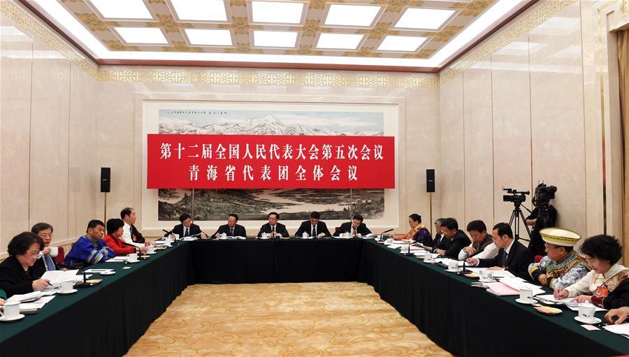 (TWO SESSIONS) CHINA-BEIJING-NPC-QINGHAI DELEGATION-PLENARY MEETING-OPEN (CN)