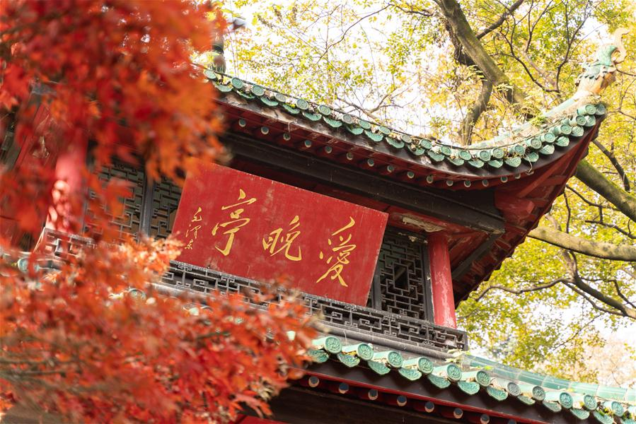 CHINA-HUNAN-CHANGSHA-AUTUMN SCENERY (CN)