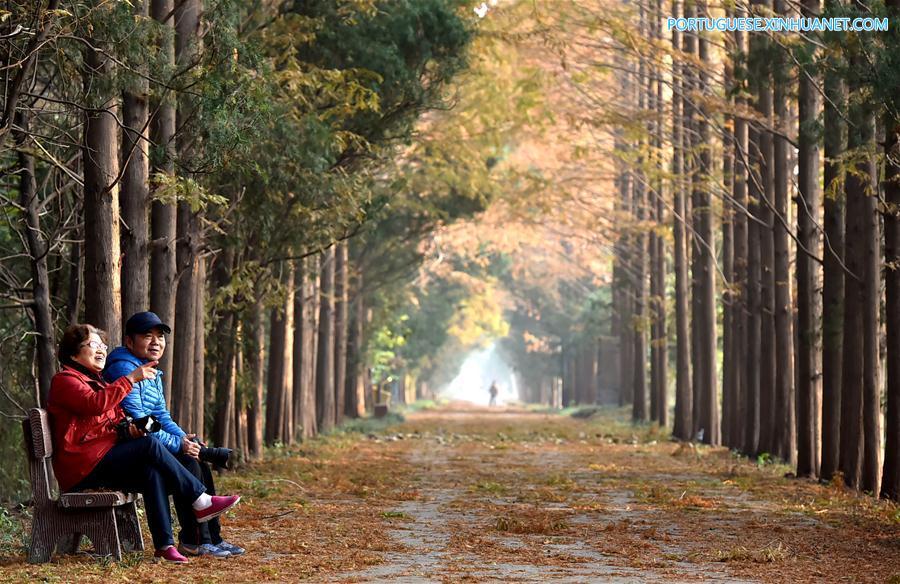 #CHINA-EARLY WINTER-SCENERY (CN)