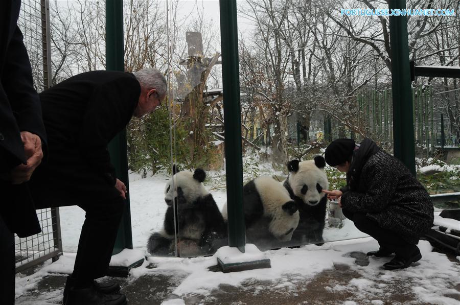 AUSTRIA-VIENNA-GIANT PANDA-TWINS-RETURNING TO CHINA