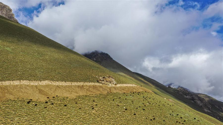 CHINA-XINJIANG-TAXKORGAN-PASTURE-SCENERY (CN)