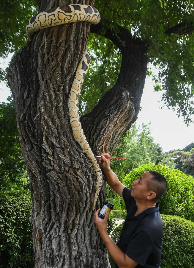 CHINA-JILIN-CHANGCHUN-TREE BARK CARVING AND PAINTING (CN)