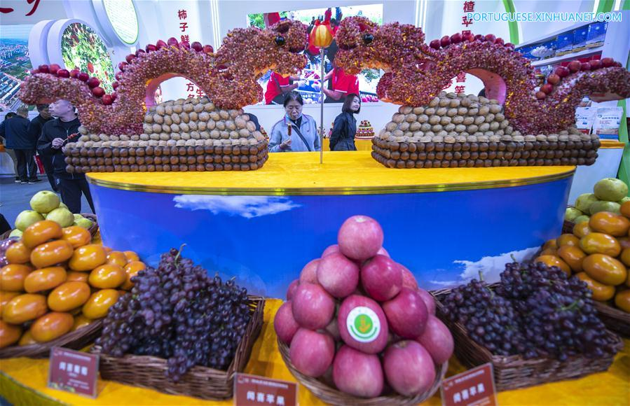 CHINA-SHANXI-YUNCHENG-FRUIT-TRADE EXPO (CN)
