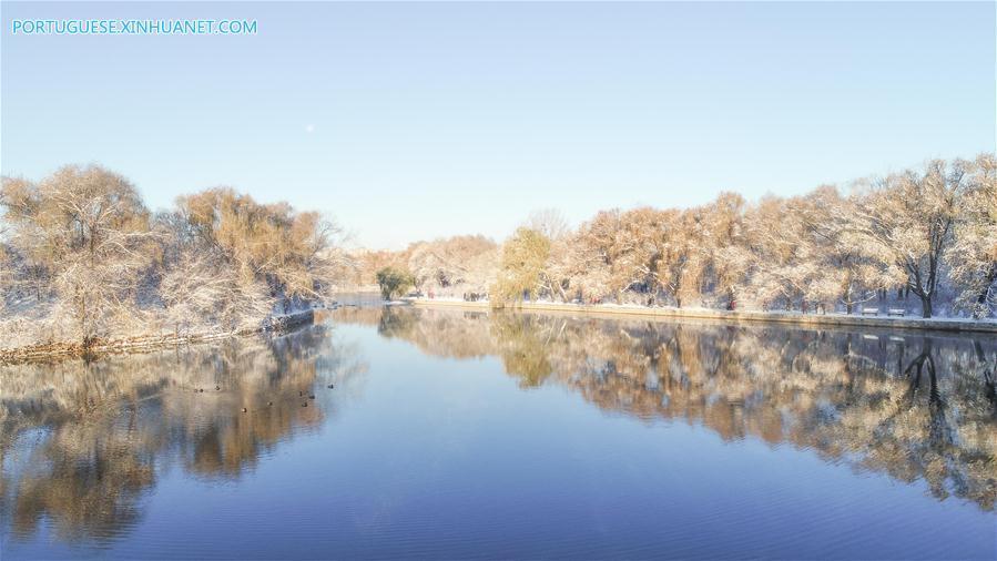 CHINA-SHENYANG-SNOW SCENERY (CN)