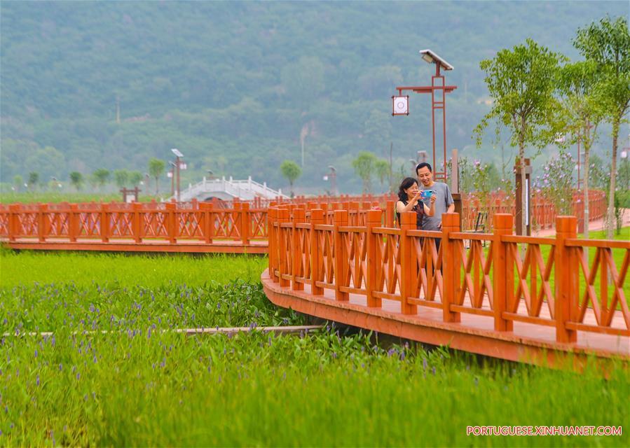CHINA-HEBEI-SHEXIAN-QINGZHANG RIVER-IMPROVEMENT (CN)