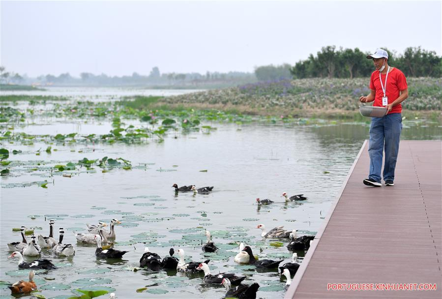 CHINA-TIANJIN-WATER TOWN-TOURISM (CN)
