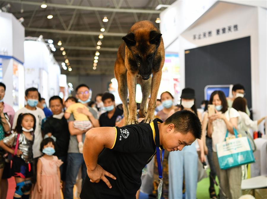 CHINA-CHENGDU-PET EXPO (CN)