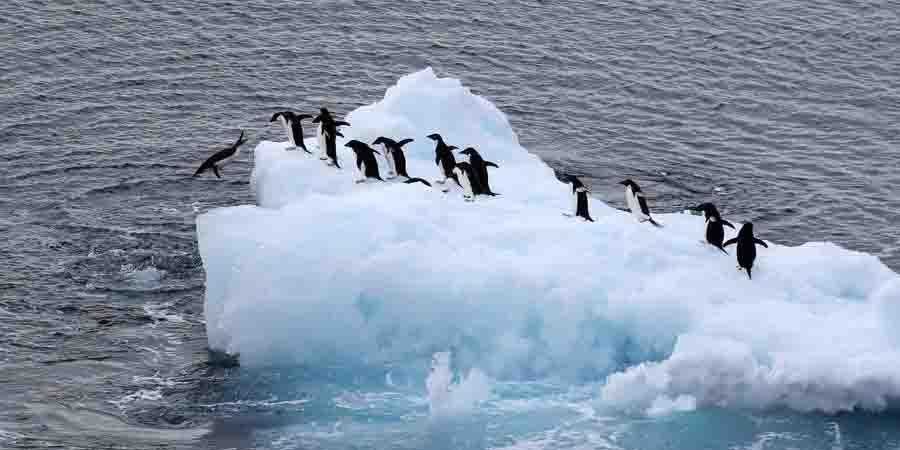 China emite guia de solicitação para turismo na Antártida