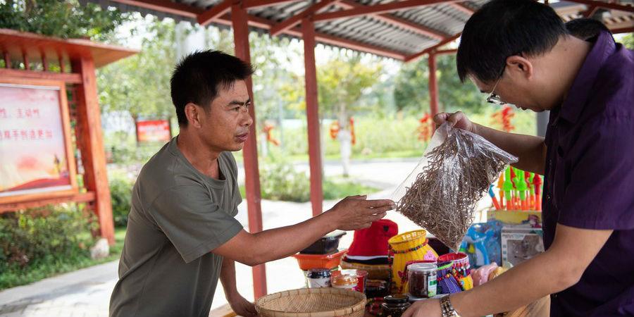 China toma medidas para ajudar na recuperação do turismo rural