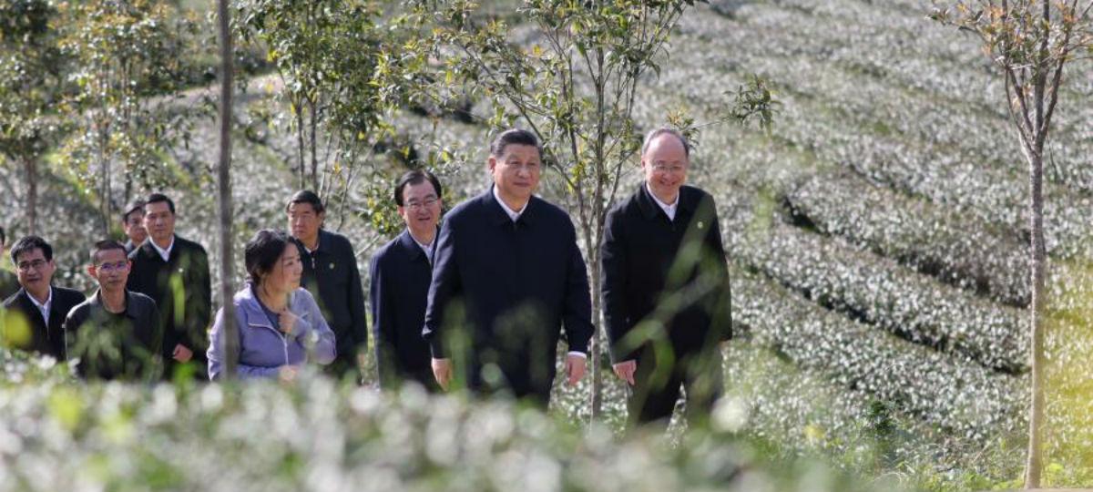 Xi enfatiza mais esforços para servir e se integrar ao novo paradigma de desenvolvimento
