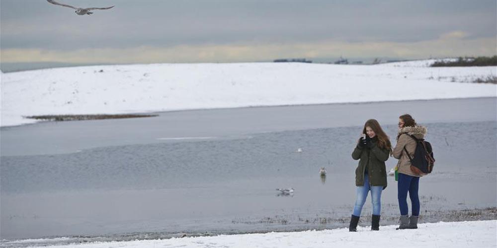 Primeira queda de neve deste inverno atinge Vancouver