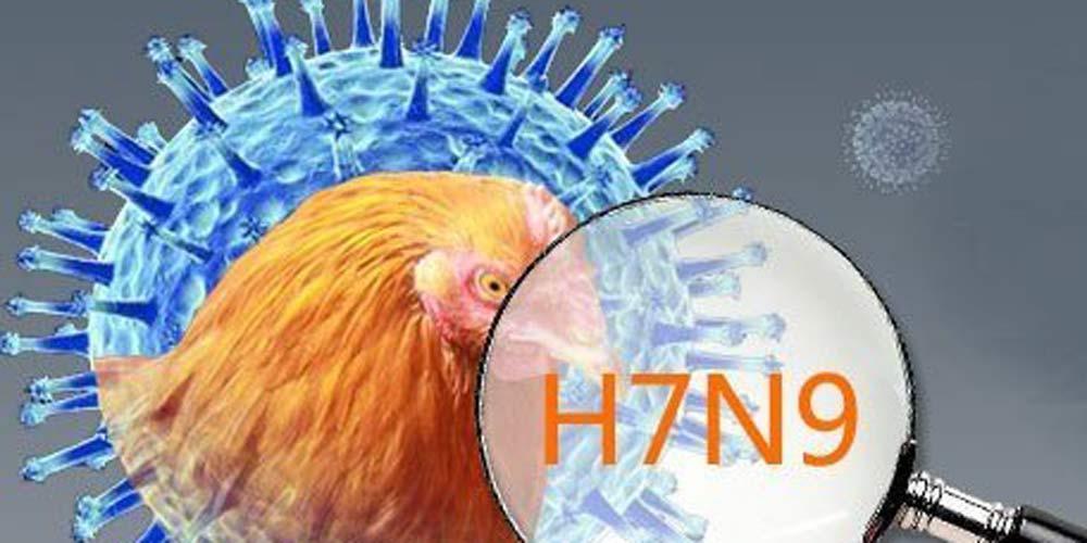 Sudoeste da China registra novo caso de infecção humana de H7N9