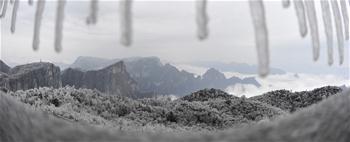 Paisagem de sincelo e geada em Zhangjiajie, centro da China