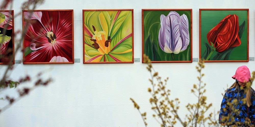Exposição de flores é realizada em Frankfurt, Alemanha