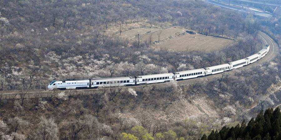 Trem corre entre cenário da primavera em Beijing
