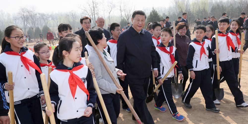 Presidente chinês planta árvores e pede compreensão e proteção da natureza