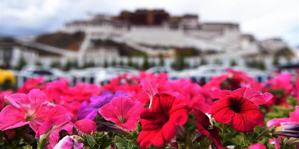 Inicia alta temporada para turistas em Lhasa