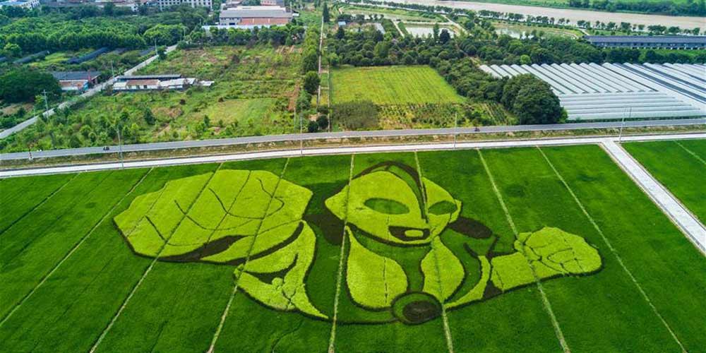 Fuyang prospera no desenvolvimento de sua indústria de turismo rural