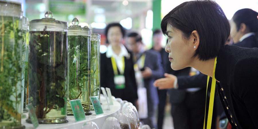 Exposição da Indústria de Medicina Tradicional Chinesa em Gansu