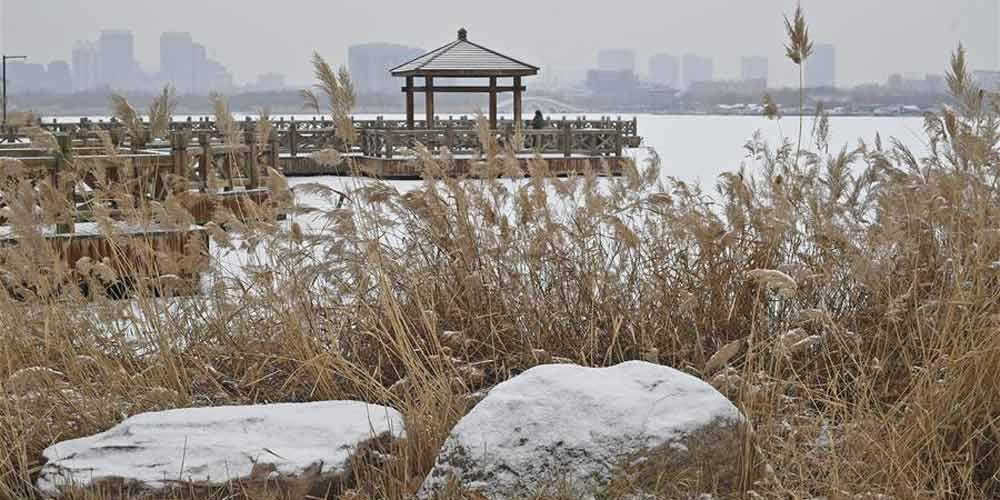Paisagem de neve no Parque Baotuquan em Jinan