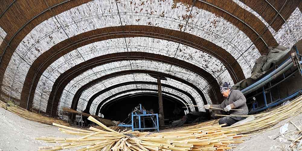 Aldeia desenvolve economia com fabricação de produtos de cana
