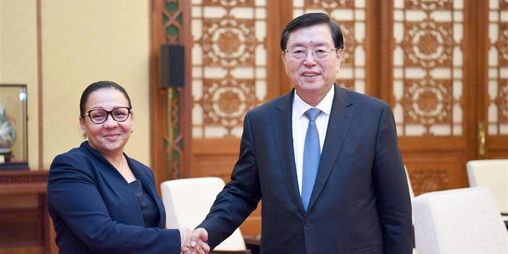 Mais alto legislador chinês reúne-se com líder do Senado do Gabão
