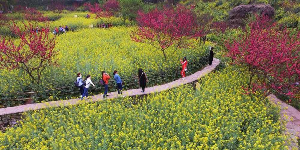 Cenário da primavera em Chongqing