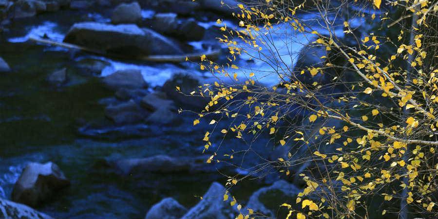 Paisagem de outono no geoparque nacional Keketuohai em Xinjiang