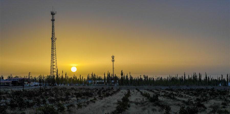 """""""Muralha verde"""" de Xinjiang luta contra expansão do deserto"""