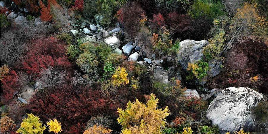 Paisagem de outono em aldeia de Henan