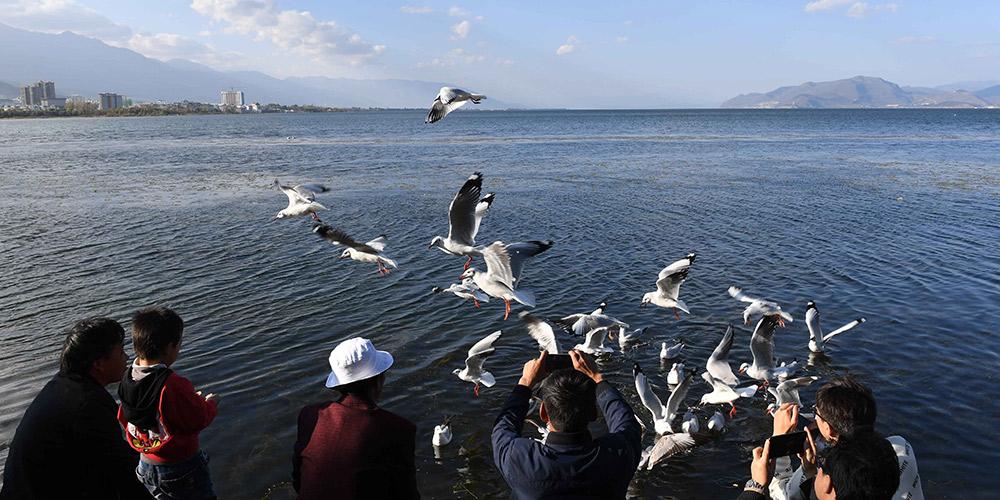 Paisagem do lago Erhai em Yunnan, sudoeste da China