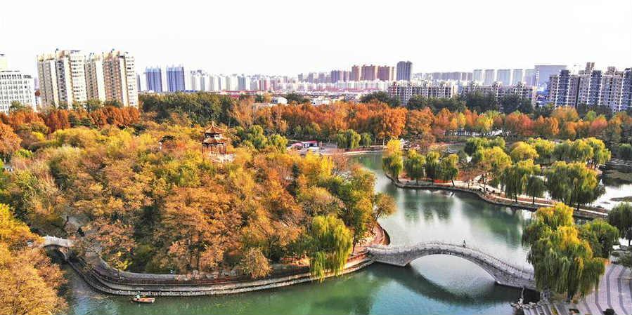 Paisagem de inverno de Shijiazhuang em Hebei