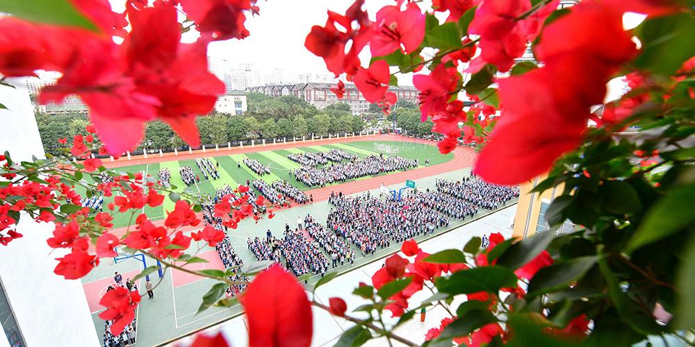 Galeria: Flores em campus de Nanning, sul da China