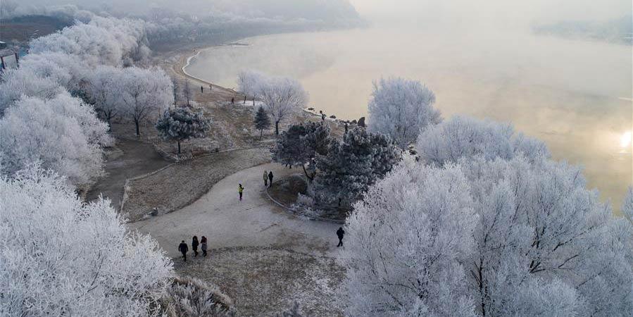 Árvores cobertas de geada nas margens do rio Songhuajiang em Jilin