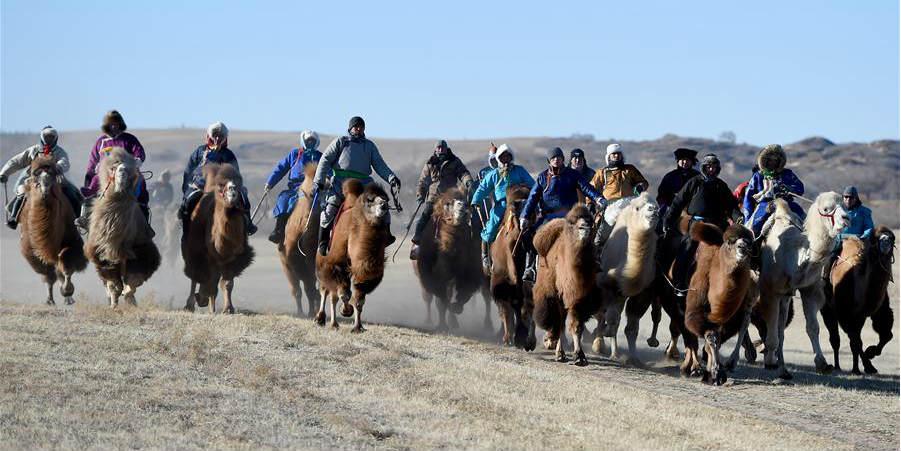 Destaques da Feira Nadam na Mongólia Interior, norte da China
