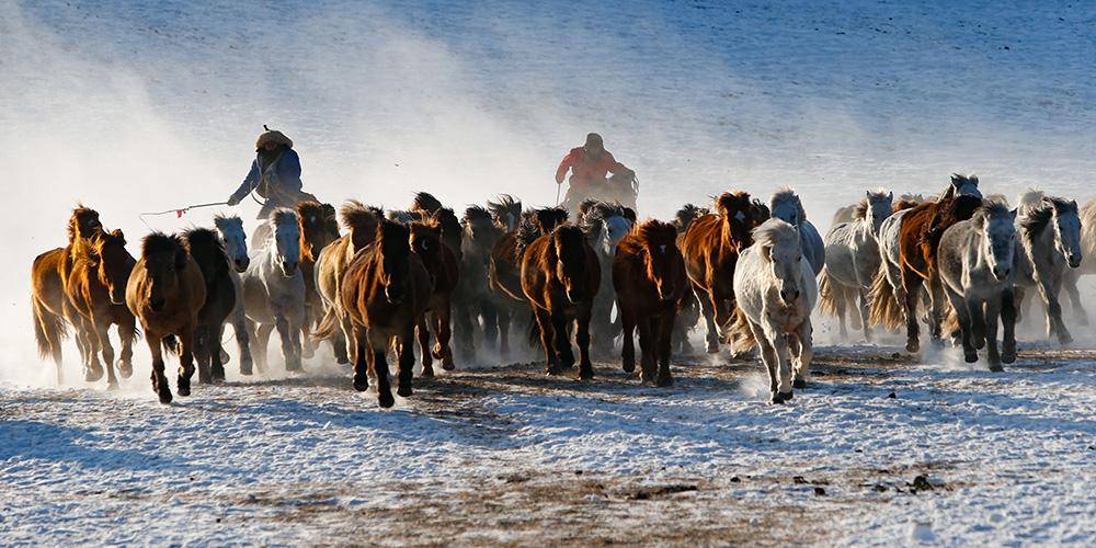 Mongólia Interior recebe grande número de turistas durante inverno