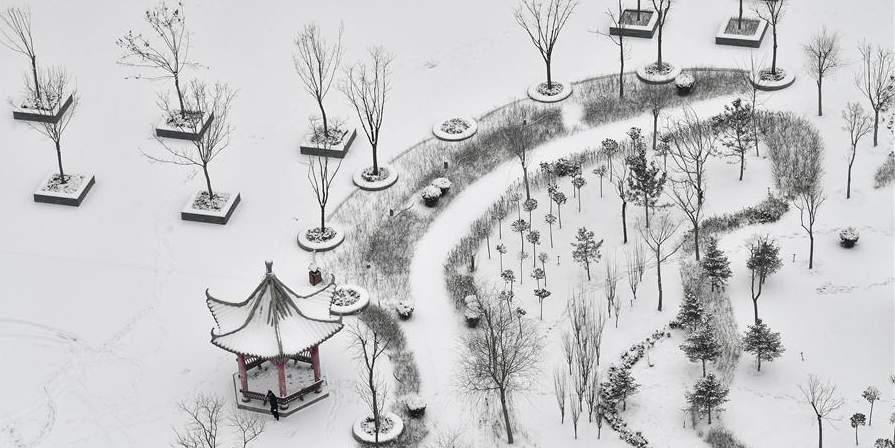 Fotos: Queda de neve no sul de Ningxia