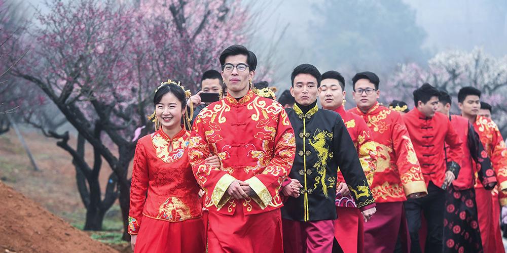 Flores de ameixa atraem muitos visitantes em Zhejiang