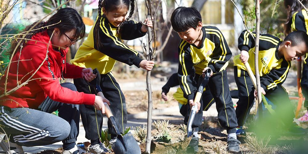 """Chineses plantam árvores para comemorar """"Dia do Plantio de Árvores"""""""