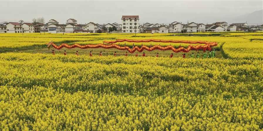 Fotos: Campos de flores de colza em Shaanxi, noroeste da China