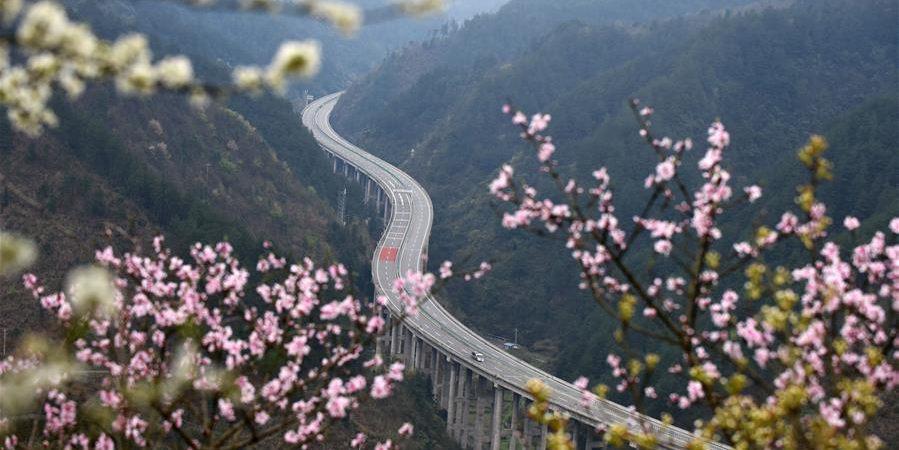 Fotos: Autoestrada Sinan-Jianhe cercada de flores em Guizhou