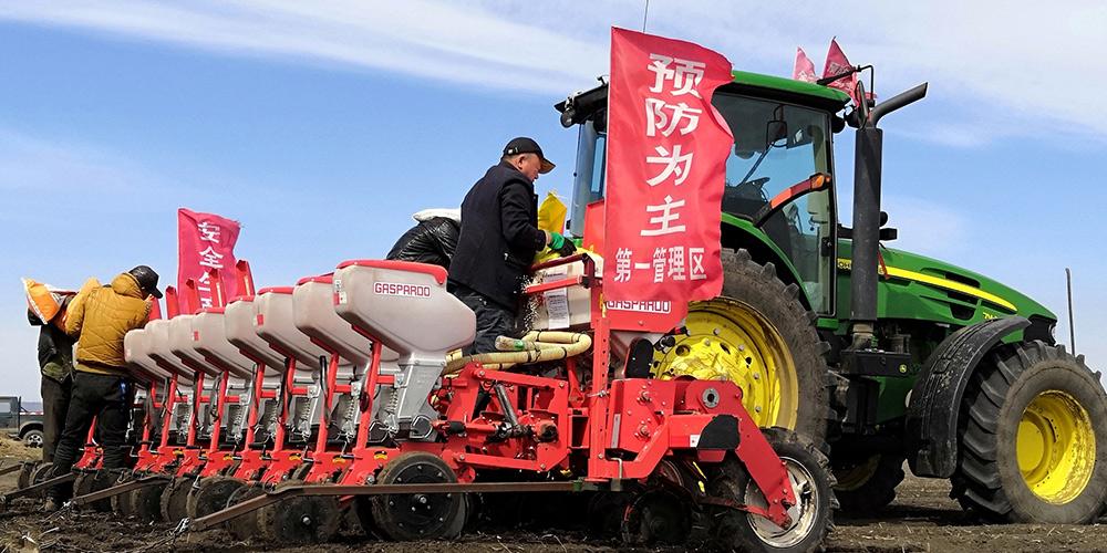 Agricultores trabalham em fazenda na província de Heilongjiang