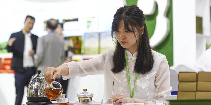 3ª Exposição Internacional de Chá da China inicia em Hangzhou