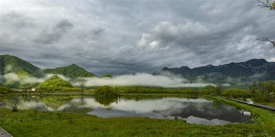 Galeria: pântano do Lago Dajiu em Hubei