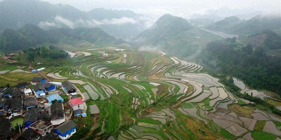 Vista de campos de terraço em Guizhou, sudoeste da China