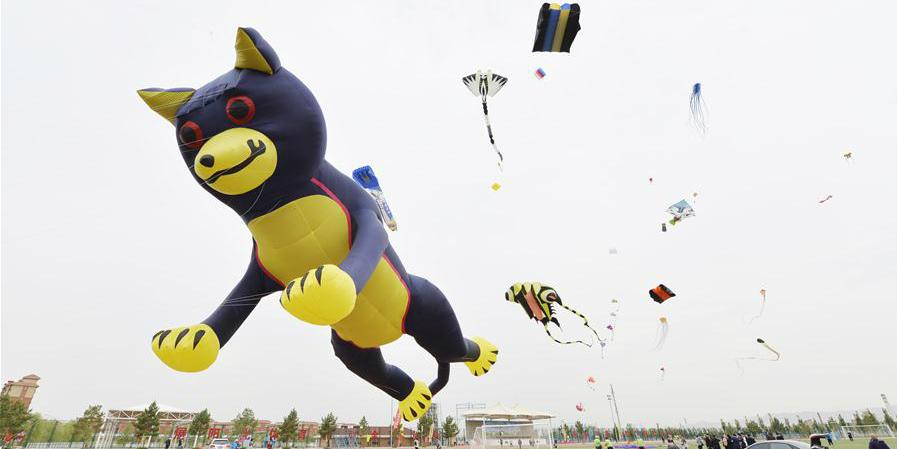 Concurso de vôo de papagaio é realizado em Baotou, na Mongólia Interior da China
