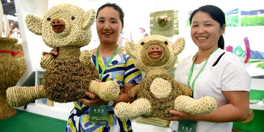 Agricultores reciclam palha de trigo durante época de colheita em Anhui