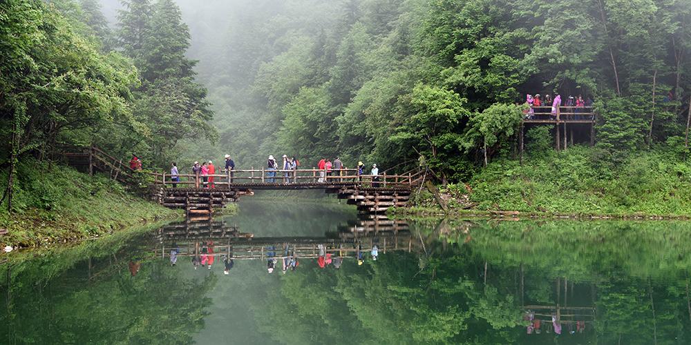 Galeria: Parque Nacional Florestal Guan'egou em Gansu