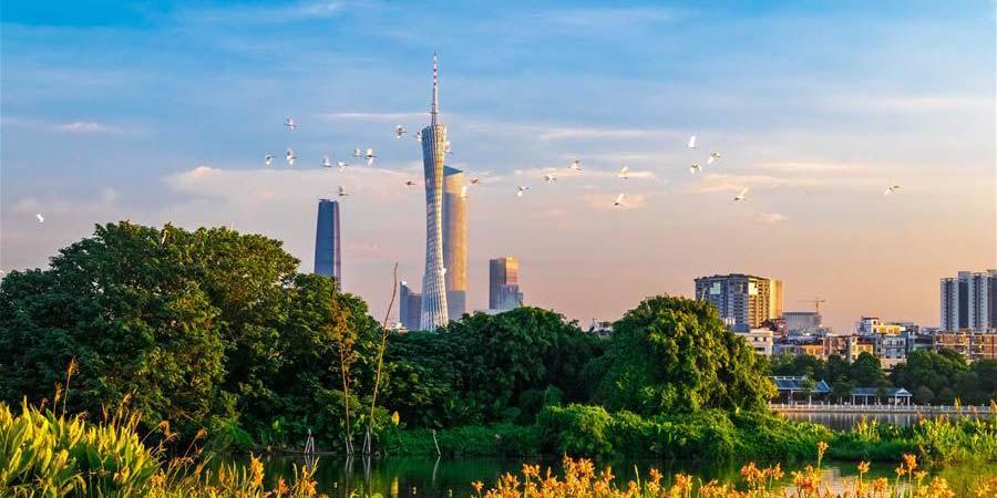 """Evento """"Dia de Guangdong"""" é realizado na Exposição Internacional de Horticultura de Beijing"""
